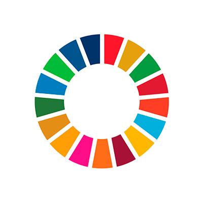 Sustainable Development Goals SDG